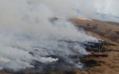 Bukte požari u Pčinjskom okrugu