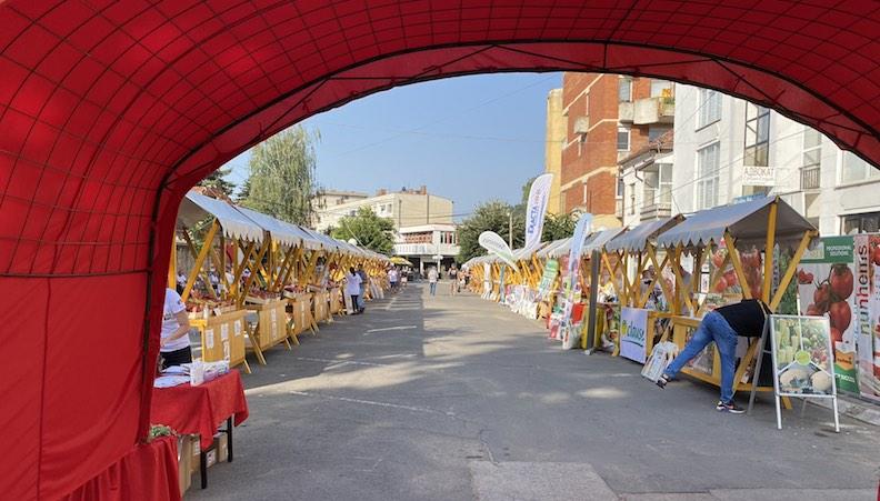 Paradajz fest – veliki broj izlagača i brojni posetioci